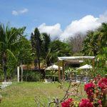 Restaurant und Mahlzeiten-im-tropischen-Garten-