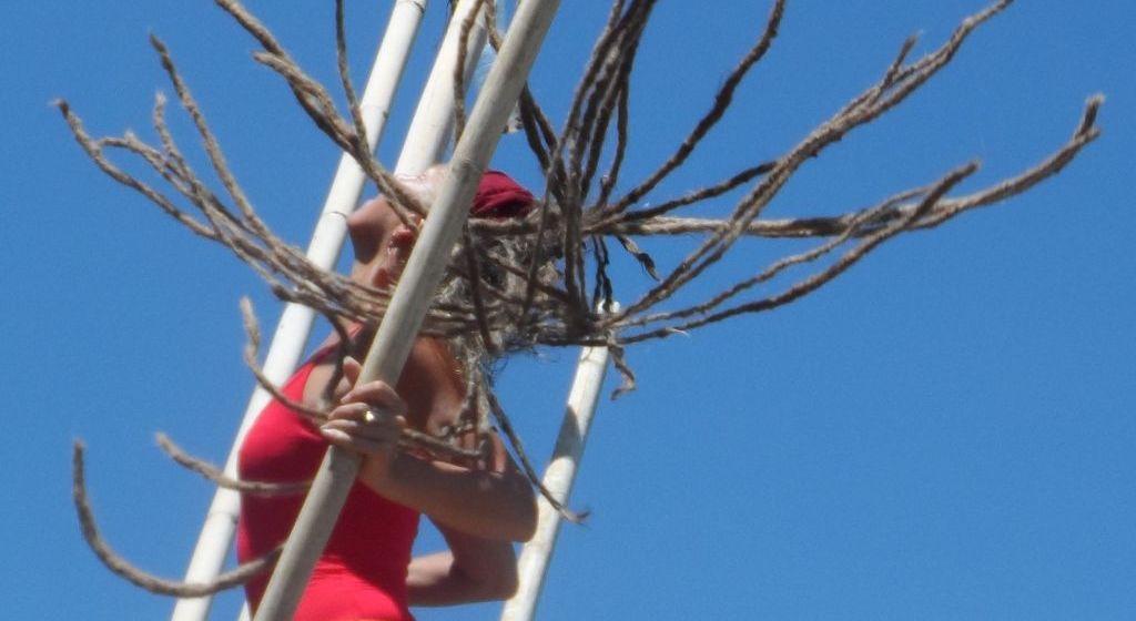 Verwirrende Zeiten-Blog Artikel Carmen Rodina