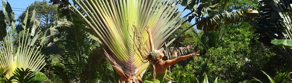 Carmen Rodina Dance of Nature